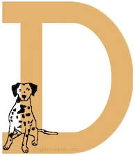 dog breeds a to z breeds that begin with d