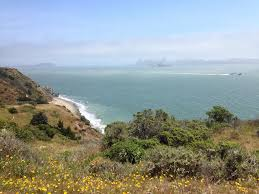 the best san francisco beaches for nudists bonfires and dogs