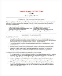 professional executive resume template 34 word pdf documents