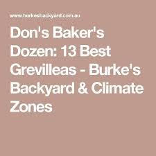 Burke Backyard 30 Best Willy Wagtail Images On Pinterest Australian Birds