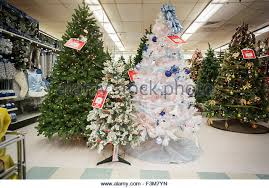 lighted palm tree kmart artificial lighted trees stock photos artificial lighted trees