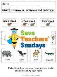4th grade herbivore carnivore omnivore worksheets 4th grade