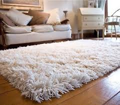 Shaggy Rugs For Living Room Best 25 Shag Carpet Ideas On Pinterest Bedroom Rugs Tall Bed