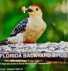 Florida Backyard Birds - vogel pontifications