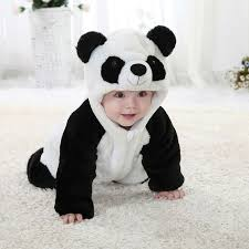 62 best panda images on pinterest animal cute panda and panda bears
