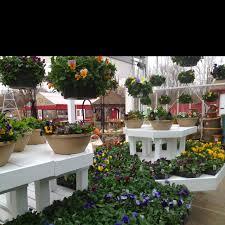 215 best garden center images on pinterest gardening garden