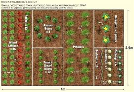 Permaculture Vegetable Garden Layout Vegetable Garden Layouts Awesome Ideas For Backyard Vegetable