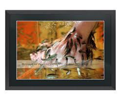 fish pedicure luxury large fine art framed photo edition new