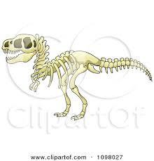 best photos of small dinosaur skeleton drawing iguanodon