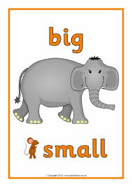 free size ordering and comparing primary teaching resources