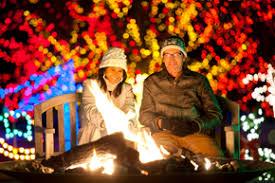 trail of lights denver lights in bloom at botanic gardens for the holiday season penny parker