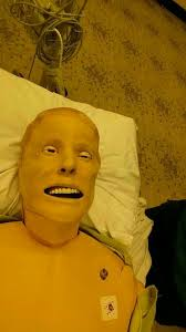 Cpr Dummy Meme - this cpr dummy looks like gary busey album on imgur