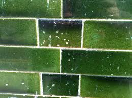 green glazed tiles matter bricks pinterest bricks black