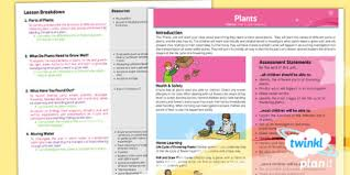 photosynthesis worksheet photosynthesis plants growth