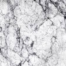 white marble white marble texture high resolution stock photo picture and