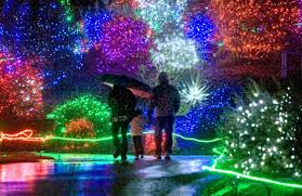 oregon zoo lights 2017 crowne plaza portland downtown events zoolights at the oregon zoo
