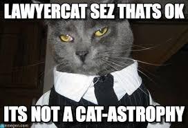 Meme Lawyer - lawyercat sez thats ok lawyer cat meme on memegen