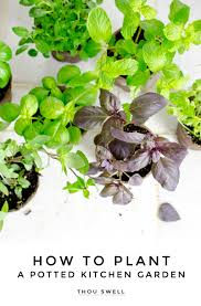 Kitchen Herb Garden Kit by How To Plant A Potted Kitchen Garden Thou Swell