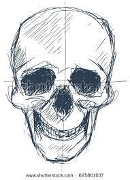 pen sketch human skull shown fronton stock vector 625801037