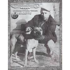 american pitbull terrier 1 a volume 41 issue 1 american pit bull terrier gazette quarterly magazine