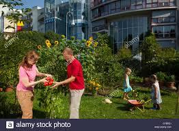 What Is Urban Gardening 100 Urban Gardening Images Urban Gardening With Waste Water