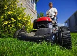 how to make grass green pro tips bob vila