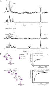 tumor associated neu5ac tn and neu5gc tn antigens bind to c type