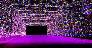 best christmas lights in chicago best holiday lights displays around the world travelingmom