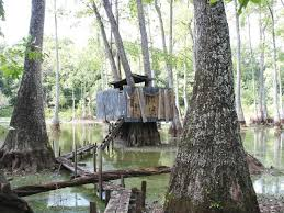 Natural Hunting Blinds Big Brake Hunting Club Equity Interest U2013 Duck Hunting In Ms