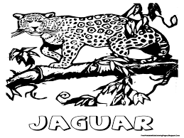 cute cartoon jaguar coloring page in coloring pages eson me