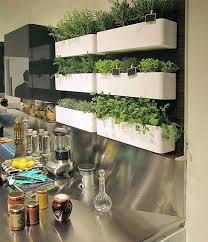 indooor herb garden modern kitchen plastic containers vertical