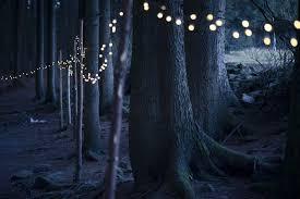 winter solstice the