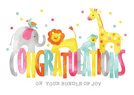 congratulations card baby animals congratulations card birth congratulations