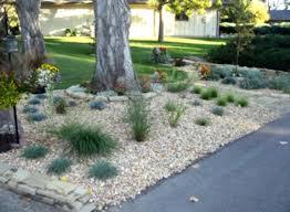 Rock Garden Florida Florida Rock Garden Landscaping Ideas Front Yard Img 1137 Homelk