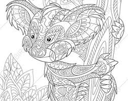 koala bear coloring page coloring pages frog zentangle doodle coloring book