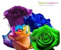 Blue Roses For Sale Blue Roses For Sale Buy Cheap Blue Roses Flower Explosion