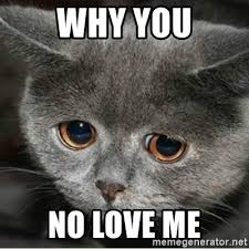 Meme Generator Cat - why you no love me sad cute cat meme generator memeshappy com