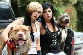 Seeking Season 1 Episode 3 Pitbull Villalobos Crew And Personal Dogs Harmony Torres And Tania