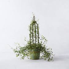 Garden Topiary Wire Forms Angel Vine Tower Topiary Terrain