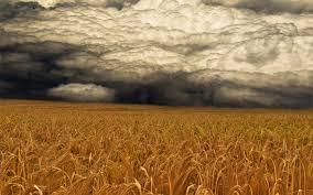 Theme Bin Blog Archive A Storm Coming Hd Wallpaper