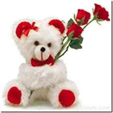 valentines day teddy bears s day teddy freakify