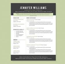 Template For Professional Resume Professional Resume Formatting Eliving Co