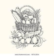 basket vegetables stylized black white vector stock vector