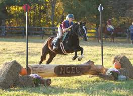 Rock Barn Equestrian Center Riding Lessons Camps Training And Boarding Just 10 Minutes From
