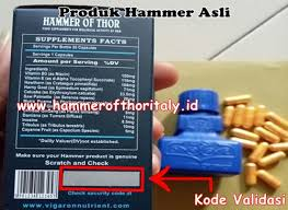 hammer of thor italy distributor hammer of thor italy