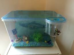 fish tank finding nemo 3d tank with matching ornaments and
