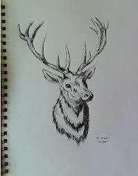 deer head by sawfia on deviantart