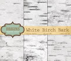 birch tree wrapping paper white birch bark digital paper birch tree backgrounds white wood