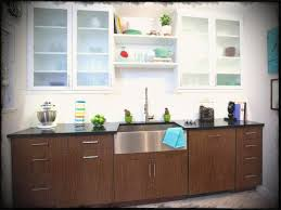 frosted kitchen cabinet doors great fashionable glass kitchen cabinet doors clear frosted cabinets