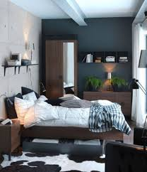 black accent wall ideas with animal printed rug for small bedroom